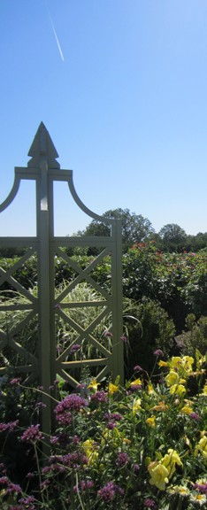 P. Allen Smith's Flower Garden at Moss Mountain