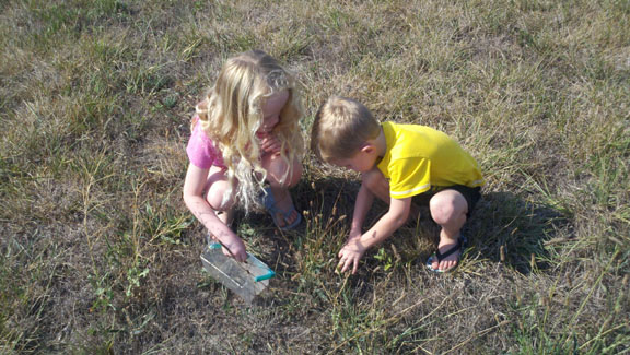 kids on a bug hunt