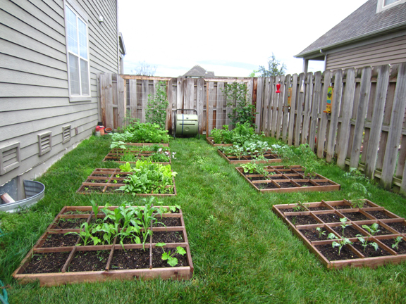 Backyard square foot garden